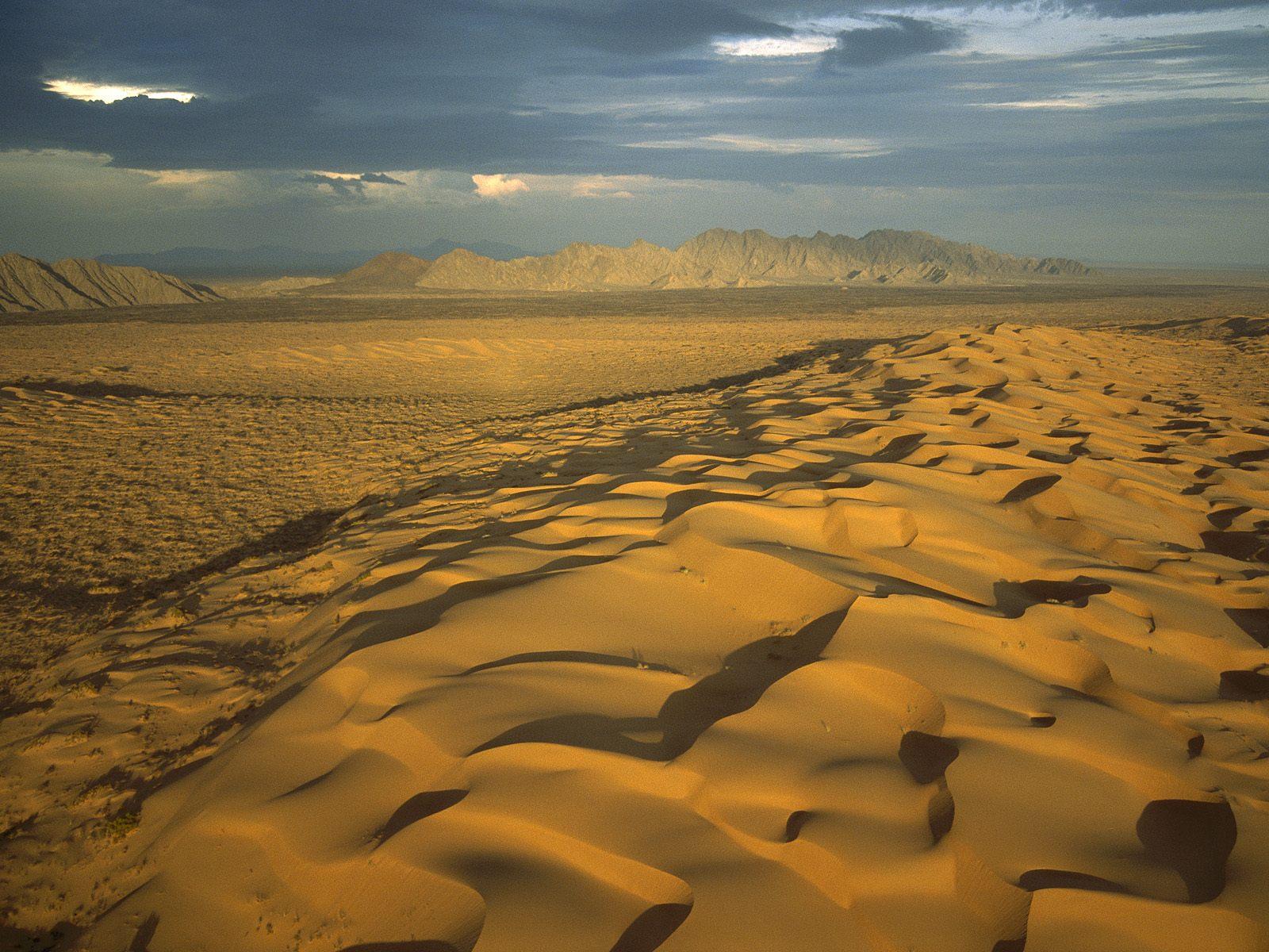 Que será de Palmira El_pinacate_gran_desierto_del_altar_biosphere_reserve_sonora_mexico